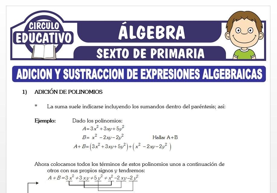 Adición y Sustracción de Expresiones Algebraicas para Sexto de Primaria