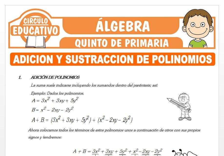 Adición y Sustracción de Polinomios para Quinto de Primaria