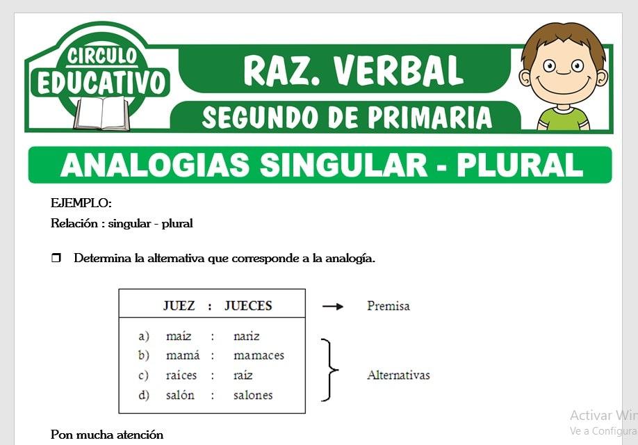 Analogías Singular - Plural para Segundo de Primaria