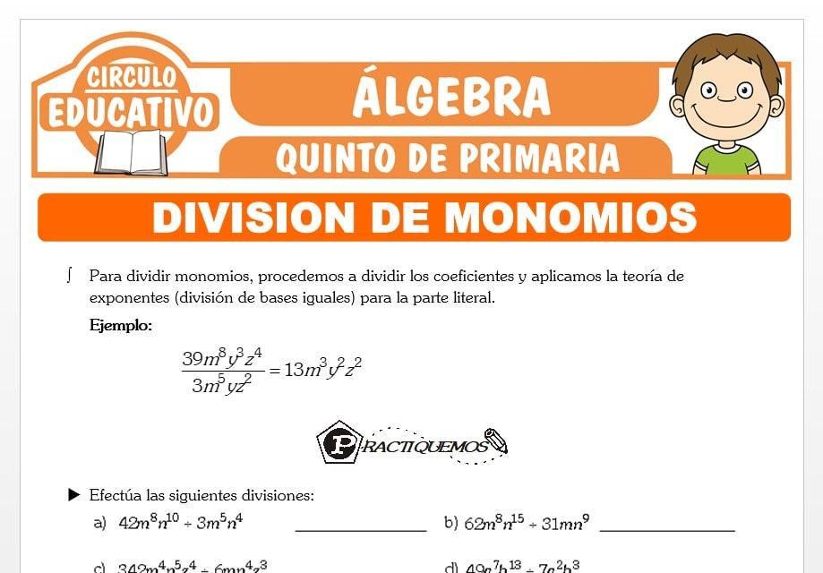 División de Polinomios para Quinto de Primaria