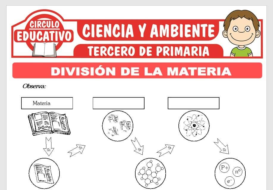 División de la Materia para Tercero de Primaria