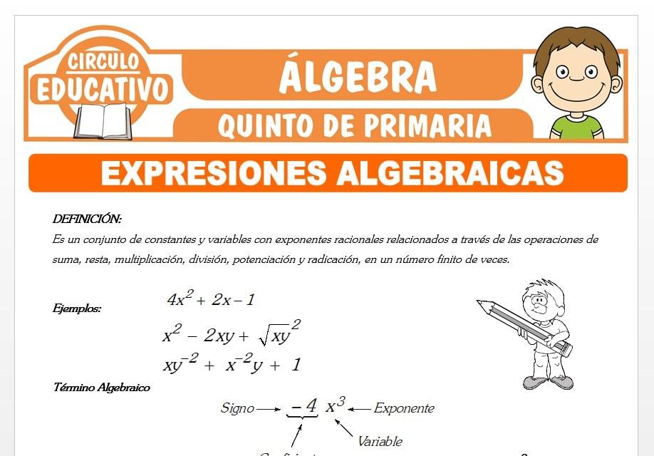 Ejercicios de Expresiones Algebraicas para Quinto de Primaria