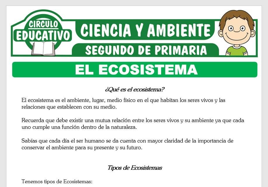 El Ecosistema y sus Tipos para Segundo de Primaria