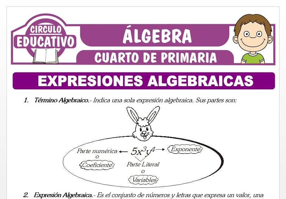 Expresiones Algebraicas para Cuarto de Primaria