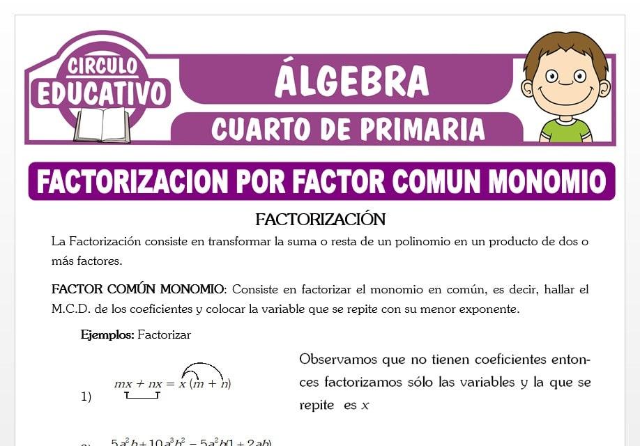 Factorizacion por Factor Común Monomio para Cuarto de Primaria