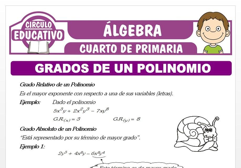 Grados de un Polinomio para Cuarto de Primaria