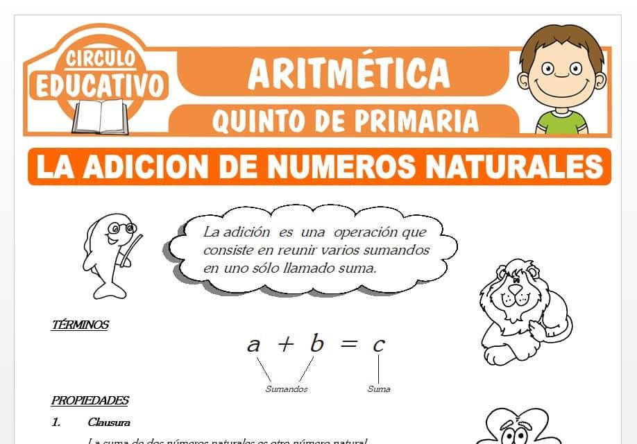 La Adición de Números Naturales para Quinto de Primaria