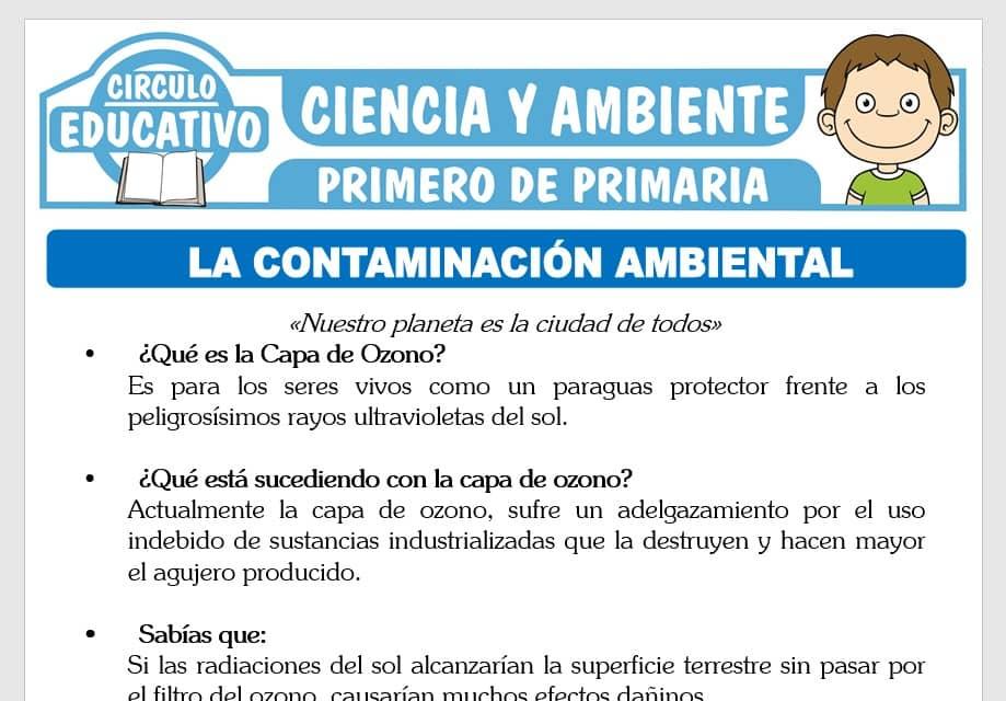La Contaminación Ambiental para Primero de Primaria