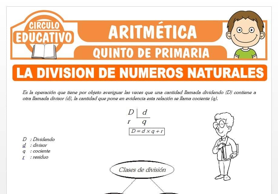 La División de Números Naturales para Quinto de Primaria