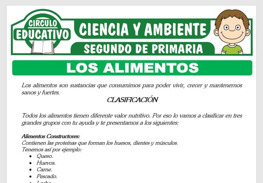 Los Alimentos y su Clasificación para Segundo de Primaria