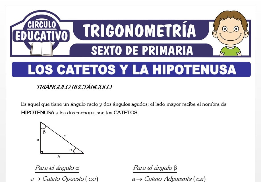 Los Catetos y la Hipotenusa para Sexto de Primaria
