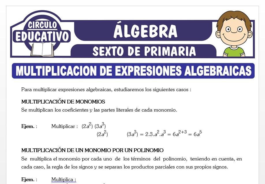 Multiplicación de Expresiones Algebraicas para Sexto de Primaria