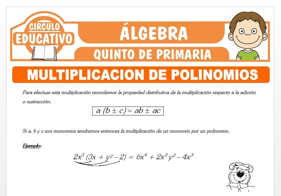 Multiplicación de Polinomios para Quinto de Primaria
