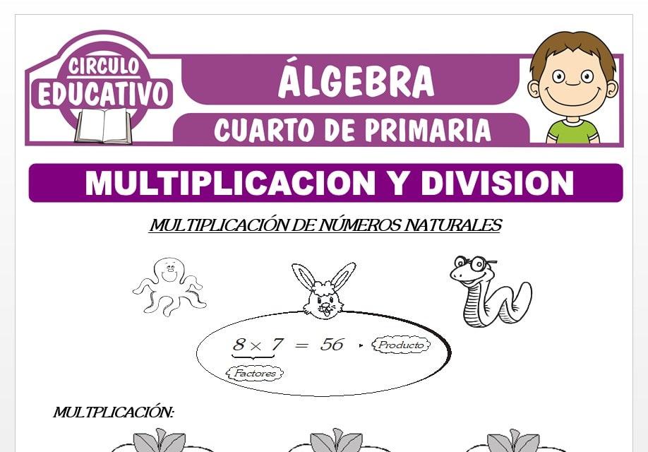 Multiplicación y División para Cuarto de Primaria