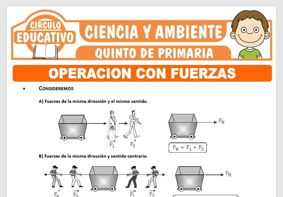 Operación con Fuerzas para Quinto de Primaria