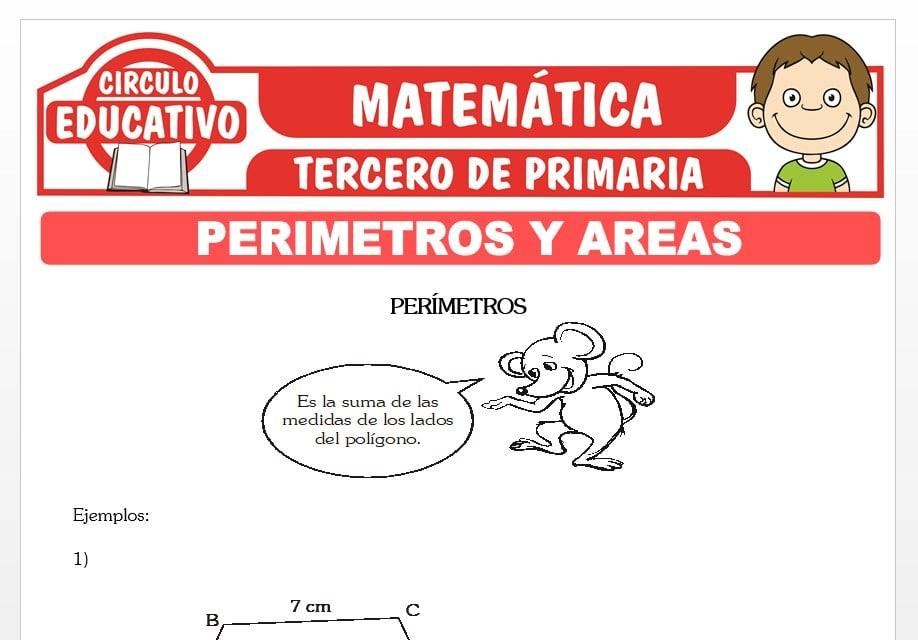 Perímetros y Áreas para Tercero de Primaria