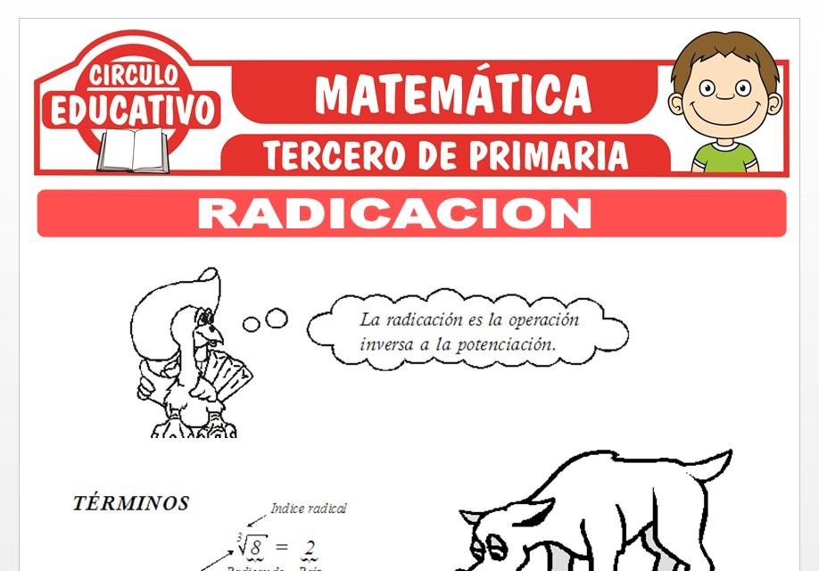 Radicación para Tercero de Primaria