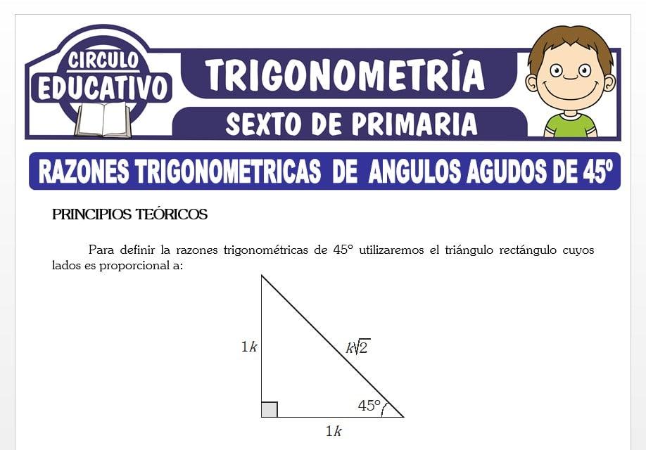 Razones Trigonométricas de Ángulos Agudos de 45° para Sexto de Primaria