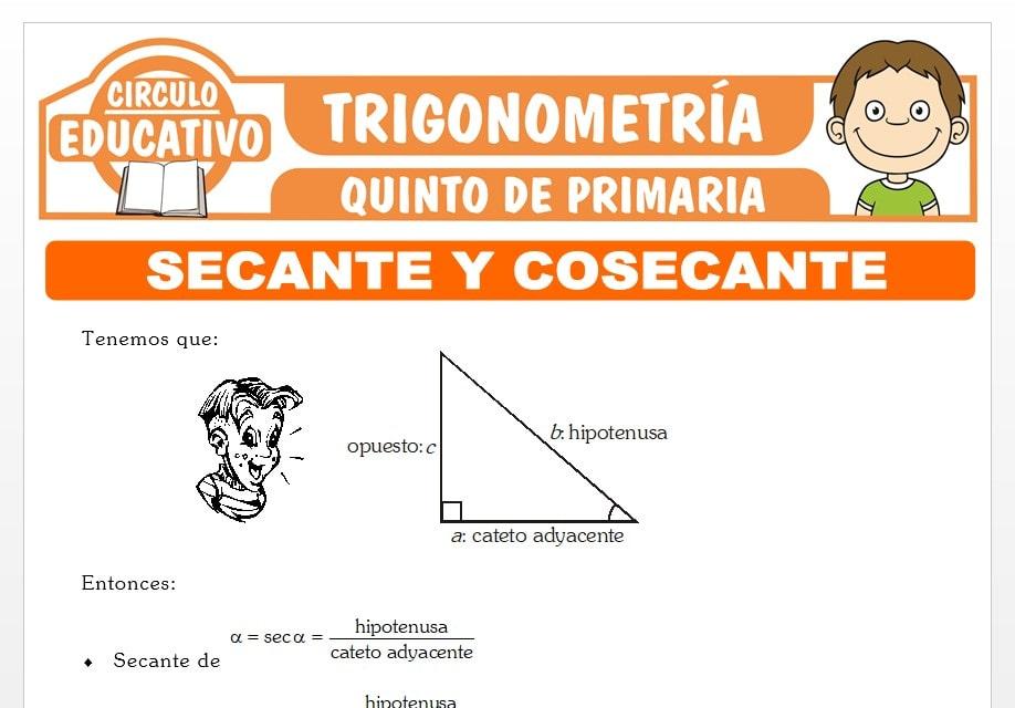Razones Trigonométricas de Secante y Cosecante para Quinto de Primaria