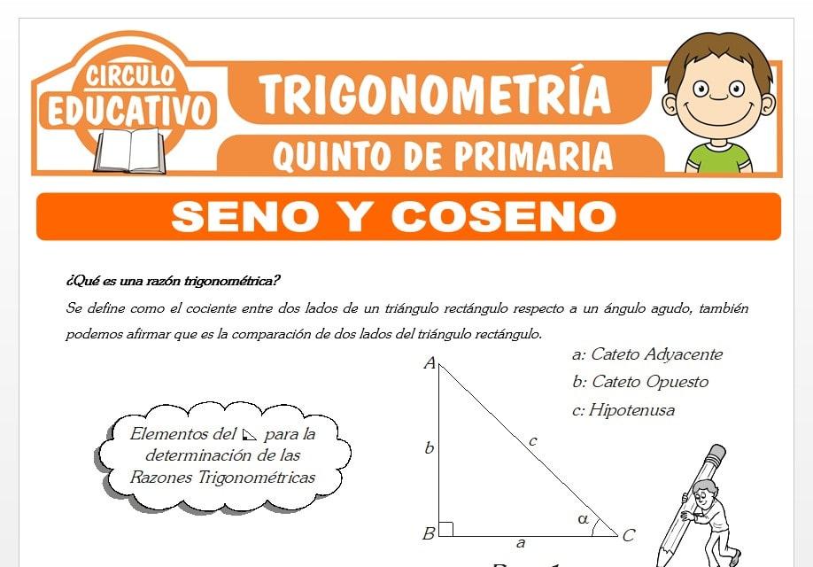 Razones Trigonométricas de Seno y Coseno para Quinto de Primaria