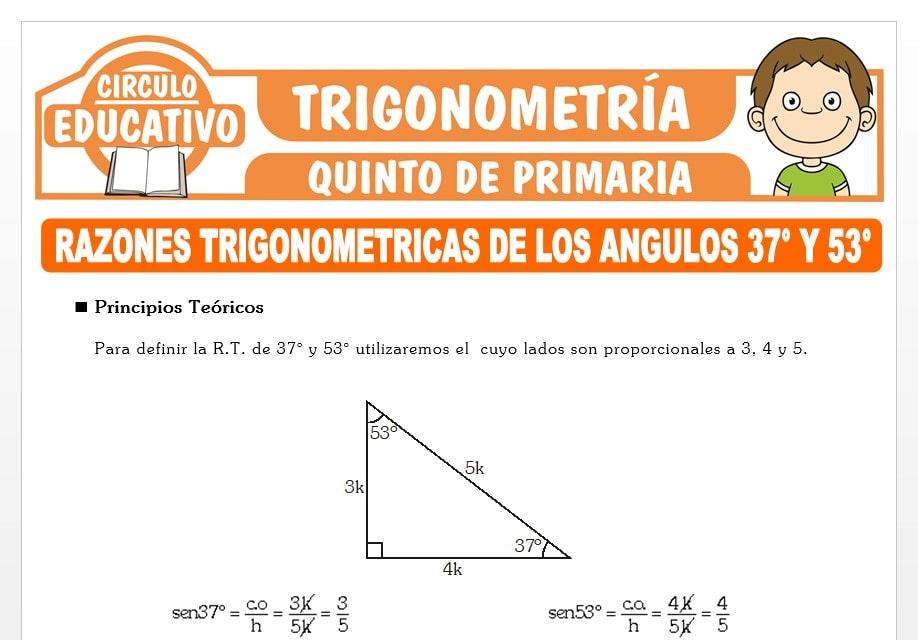 Razones Trigonométricas de los Ángulos 37° y 53° para Quinto de Primaria