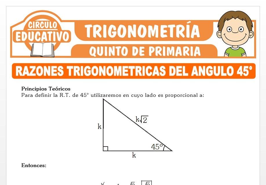 Razones Trigonométricas del Ángulo 45° para Quinto de Primaria