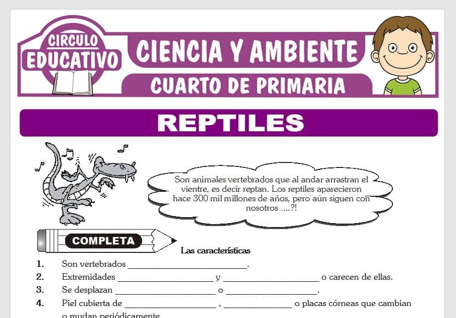 Reptiles para Cuarto de Primaria