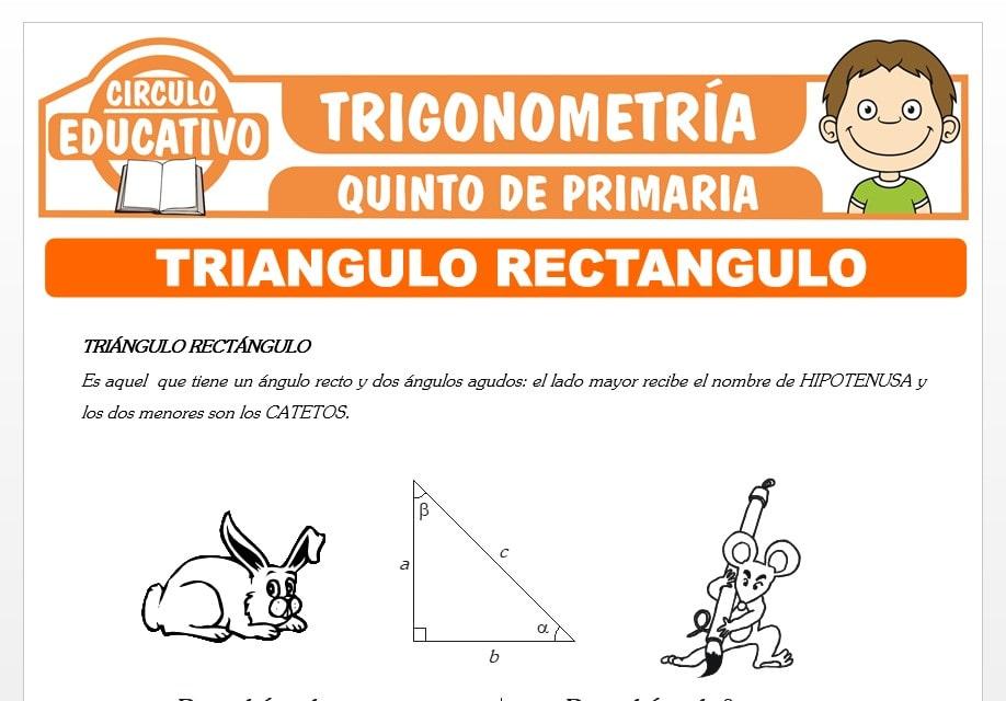 Triángulo Rectangulo para Quinto de Primaria