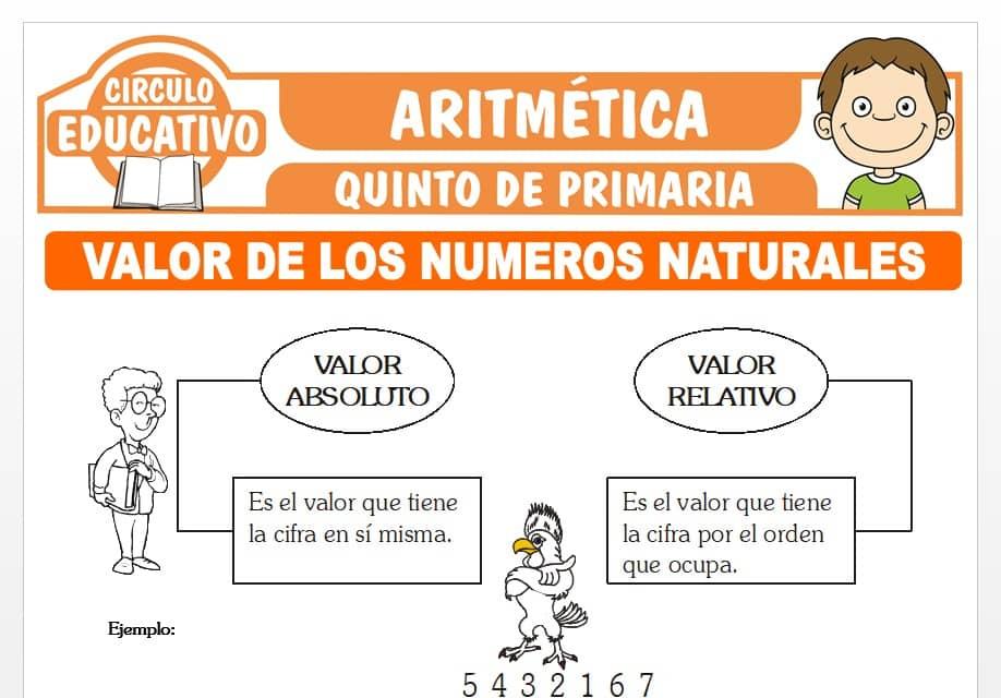 Valor de los Números Naturales para Quinto de Primaria